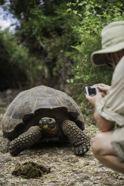 Tourist Photographing a Captive Galapagos Tortoise at the Charles Darwin Research Station by Jad Davenport