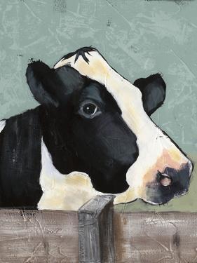 Holstein Cow I by Jade Reynolds