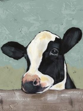 Holstein Cow II by Jade Reynolds