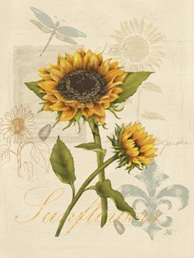 Romantic Sunflower II by Jade Reynolds