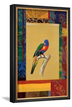 Australian Parrot by Jaggu Prasad