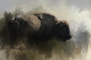 Abstract American Bison by Jai Johnson