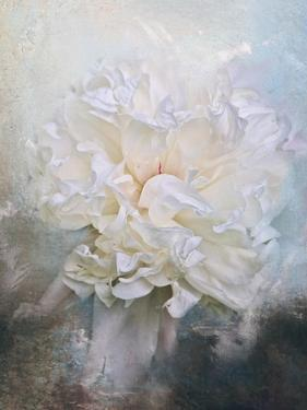 Abstract Peony in Blue by Jai Johnson