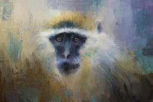 African Grivet Monkey by Jai Johnson