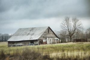 An Old Gray Barn by Jai Johnson