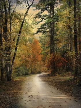 Autumn Forest 4 by Jai Johnson