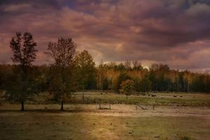 Autumn in the Country by Jai Johnson