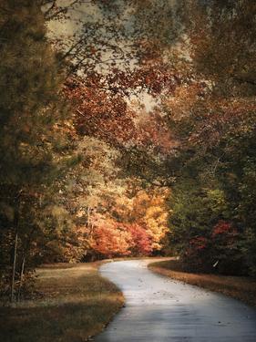 Autumn Passage 1 by Jai Johnson