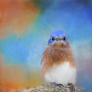 Blue Is Beautiful by Jai Johnson