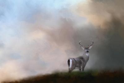 Buck on the Hill by Jai Johnson