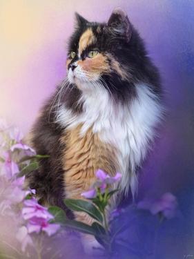 Calico Kitty in the Garden by Jai Johnson