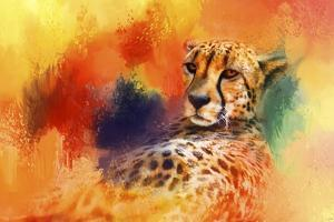 Colorful Expressions Cheetah by Jai Johnson