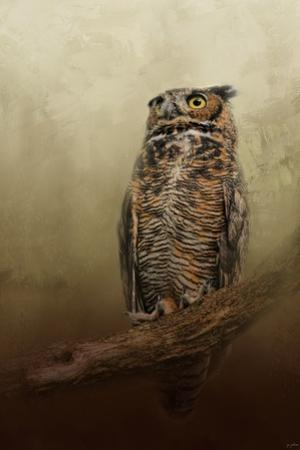 Great Horned Owl at Shiloh by Jai Johnson