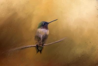 Hummingbird in Autumn by Jai Johnson