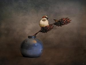 Little Sparrow Friend by Jai Johnson