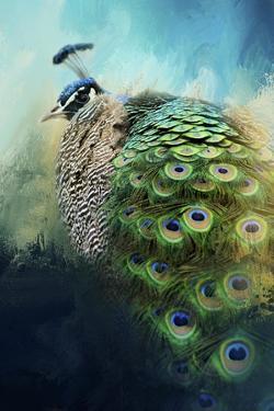 Peacock in Winter by Jai Johnson