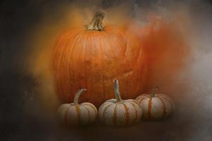 Pumpkins in October by Jai Johnson
