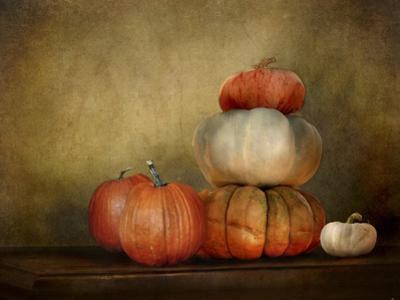 Pumpkins Still Life by Jai Johnson