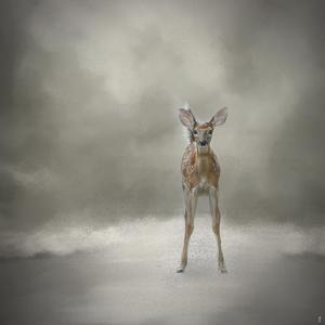 Stand Strong Little Fawn by Jai Johnson
