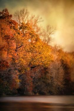 The Birth of Autumn by Jai Johnson
