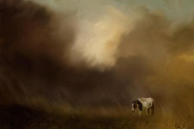 Traveling Through the Storm by Jai Johnson