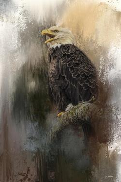 Winter Eagle 3 by Jai Johnson