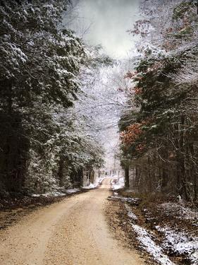 Winter Paradise by Jai Johnson