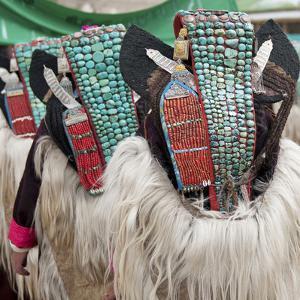 Married Ladakhi Women with Perak, Ladakh, India by Jaina Mishra