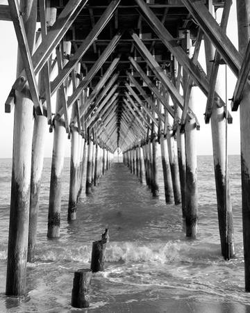 By the Dock I by Jairo Rodriguez