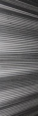 Threads II by Jairo Rodriguez