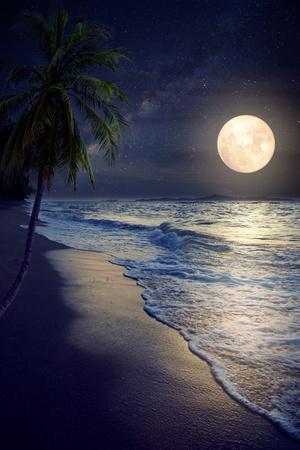 Beautiful Fantasy Tropical Beach with Milky Way Star in Night Skies, Full Moon - Retro Style Artwor