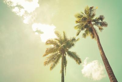 Palm Trees at Tropical Beach Coast, Vintage Color Tone and Film Stylized by jakkapan