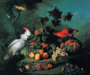 Fruit And Birds by Jakob Bogdany