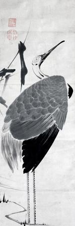 A Cranes Sumi on Paper 1 by Jakuchu Ito
