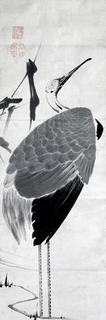 A Cranes Sumi on Paper 1