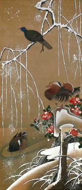 Mandarin Duck in the Snow 2 by Jakuchu Ito