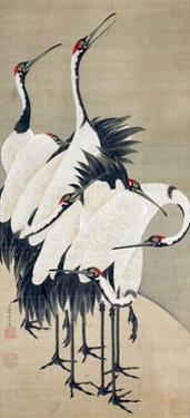 Seven Cranes by Jakuchu Ito