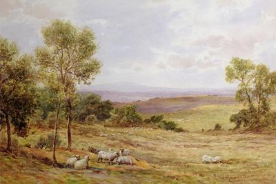 Cumberland Hills from Wardrew House, Gilston