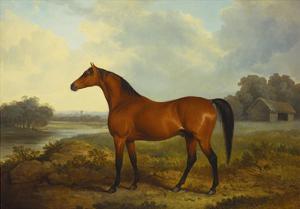 A Bay Stallion in a River Landscape by James Barenger