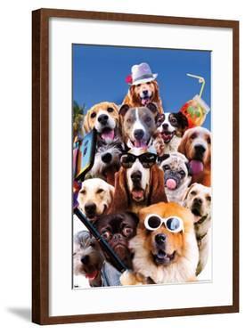 James Booker - Dog Selfie
