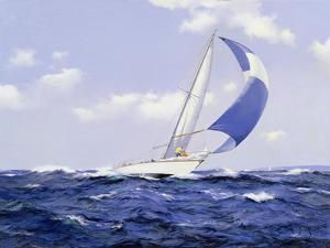 Setting More Sail, 2005 by James Brereton