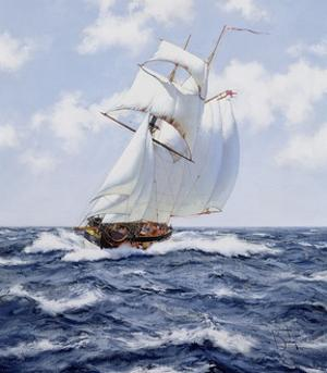 The Schooner 'H.M.S. Pickle', c.1992 by James Brereton