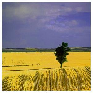 Farmscape I by James Burghardt