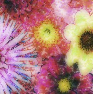 Floral Reef III by James Burghardt