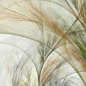 Fractal Grass III by James Burghardt