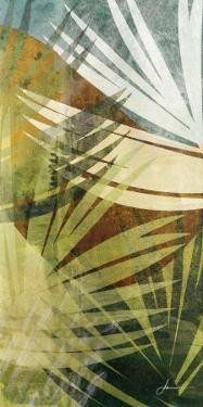 Palm Frond II by James Burghardt