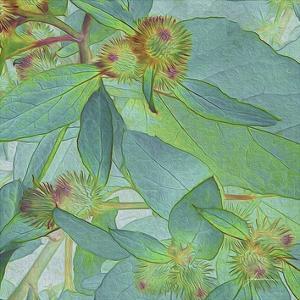 Prickley Tiles I by James Burghardt