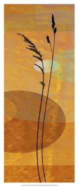 Sunset Duet I by James Burghardt