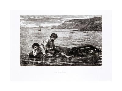 Sea Urchins, 1872