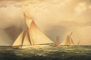 Puritan and Priscilla off Sandy Hook by James Edward Buttersworth